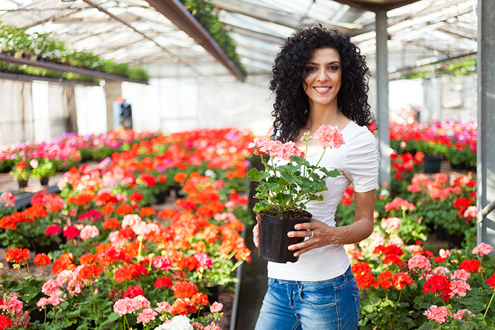 The 10 Best Garden Centers and Nurseries in Texas!