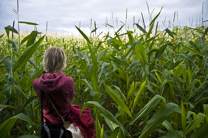 The 9 Best Corn Mazes in Vermont!