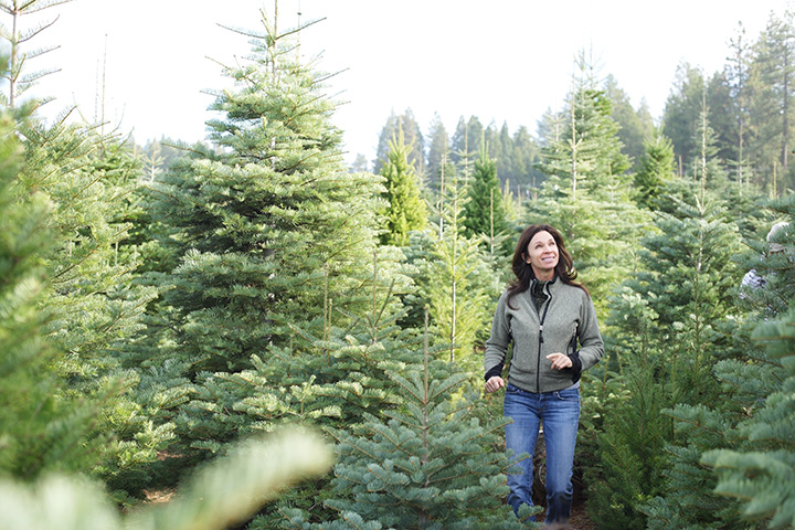 The 9 Best Christmas Tree Farms in Washington State!
