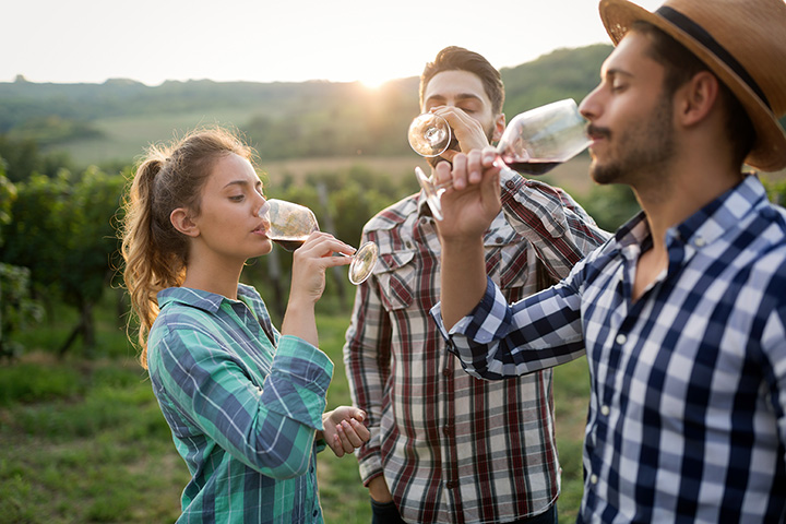 The 10 Best Wineries in West Virginia!